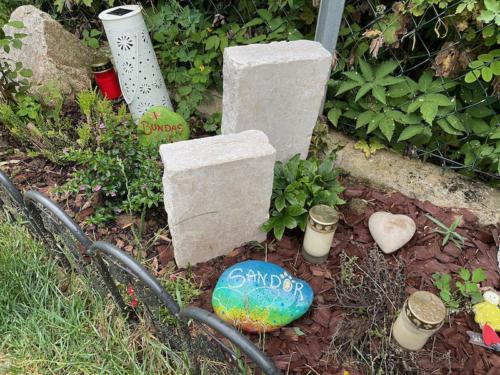 stein sandor grab